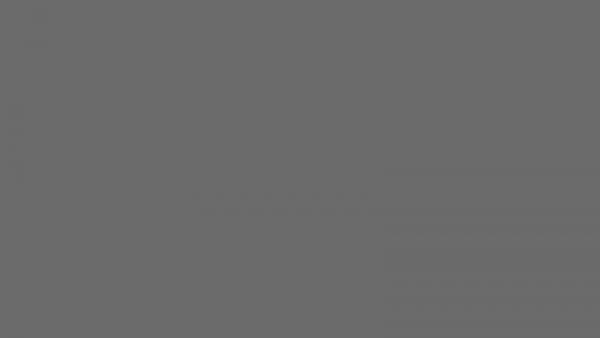 1K Spray Eisenglimmer - Metallschutzlack